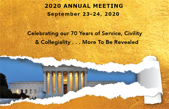 2020_Annual_Meeting_Promov2